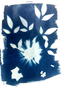 suzanne_cyanotype_cropped