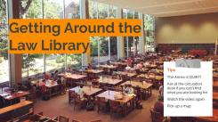 Everything Library Lunch & Learn (4)